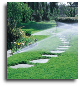 Irrigation & Sprinkler System Picture
