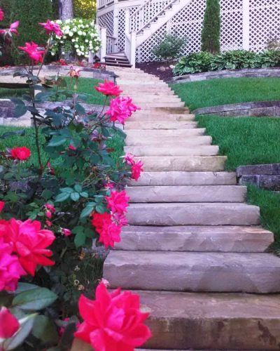 Landscaping services featuring steps and plants
