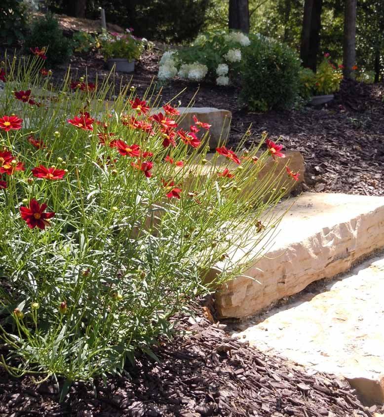 Stone Steps with Landscape Designer Plants
