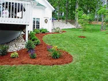 landscaping plants and mulch