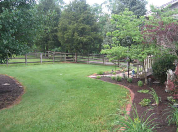 Landscaped front yard with grassy area for kids and pets