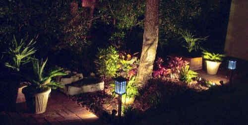 Solar lights illuminate a backyard landscape