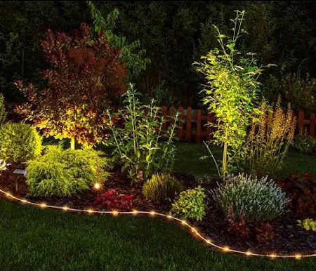 Landscaped grouping of plants and shrubs highlighted by solar lights and edging.