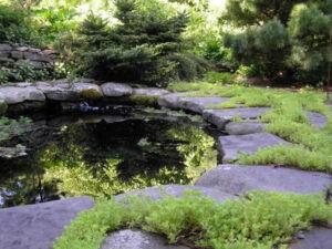 Lovely hardscape installation around a natural pond