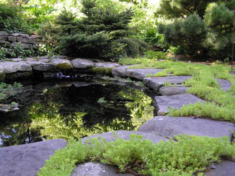 Lovely hardscape installation around a natural pond