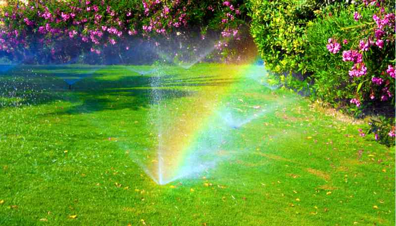 Beautiful rainbows caused by the lawn sprinkler system in a yard surrounded by a flower garden